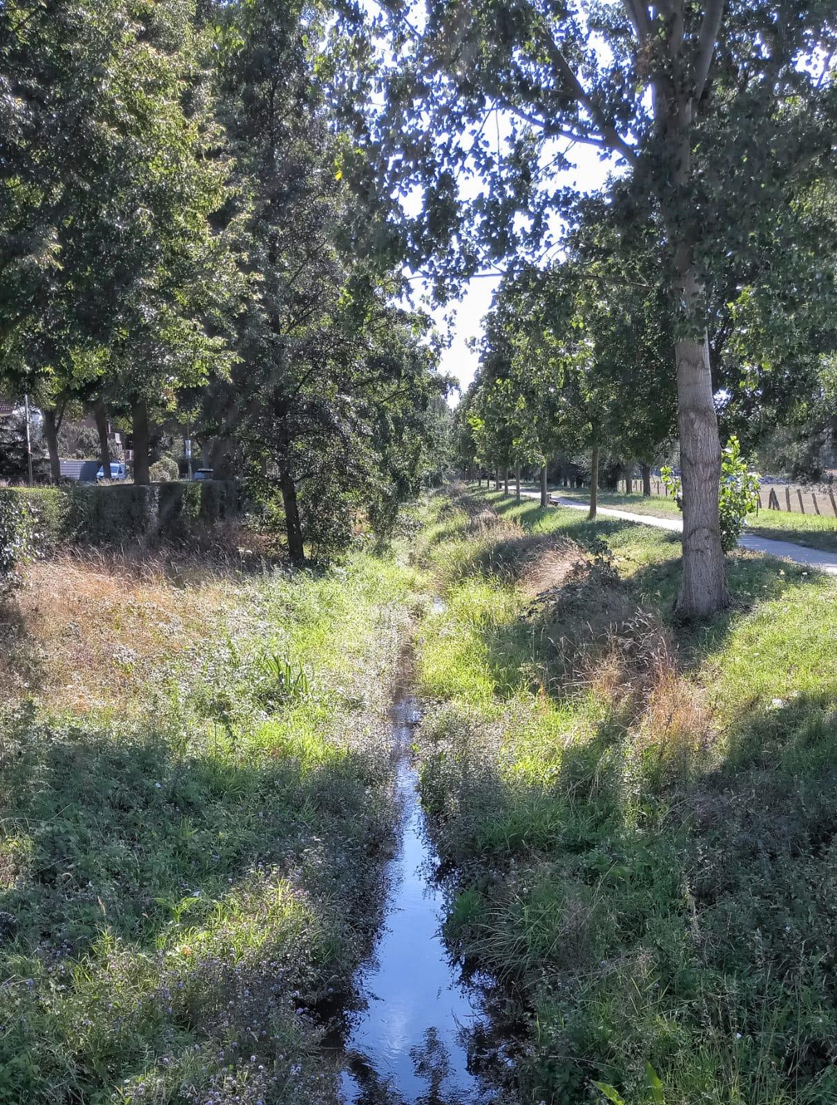 GRÜNE Radtour entlang des Norfbachs