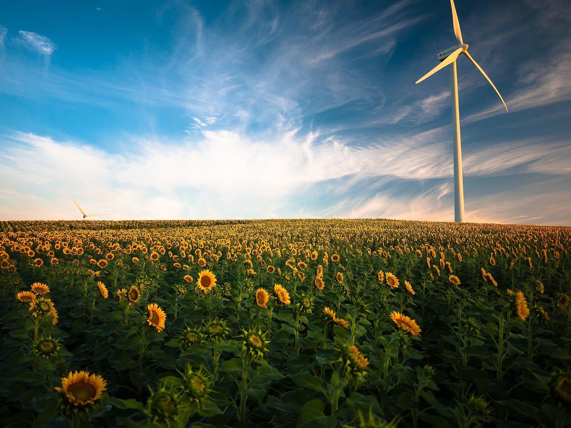 Arbeitskreis Umwelt, Klima, Energie